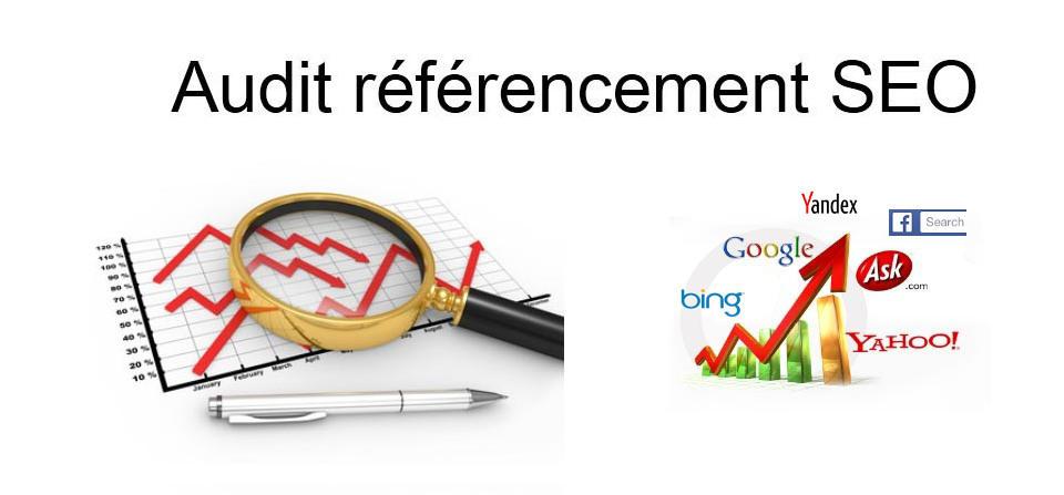 Consultant en référencement et visibilité web à Lyon